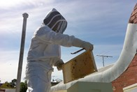 Mat Lumalasi tends to the honey beehive on top of the La Luna restaurant building. (Credti: Rooftop Honey))