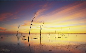 Images of Australia: Lake Gregory, Tanami Desert