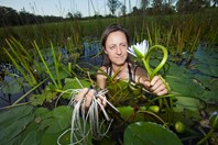 Claire plucks waterlilies from a nearby wetland for a bush tucker stir-fry. She spent a year in the wilderness without modern luxuries.