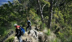 Queensland's new Scenic Rim Trail