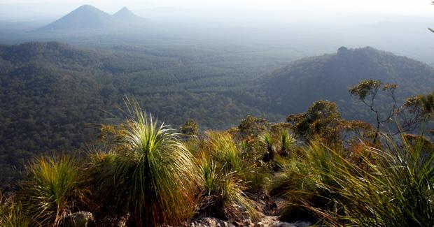 climbing australia glasshouse mountains tibrogargan area