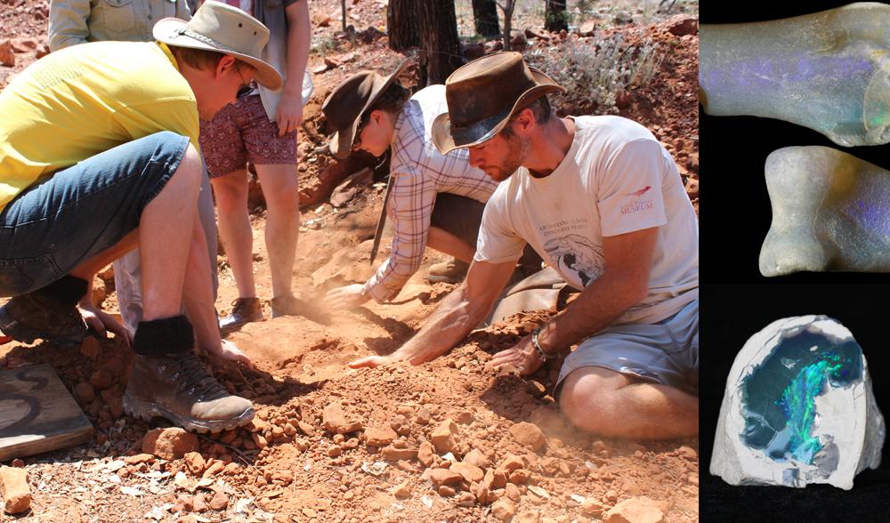 Lightning Ridge fossil dig