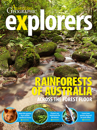 Rainforests of Australia