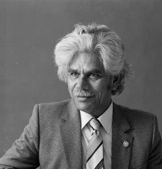 neville bonner australian of the year I t would be untrue to say the moderate aboriginal activist neville bonner became the first of his people elected to federal parliament because he took the opportunities the australian federal political system afforded.