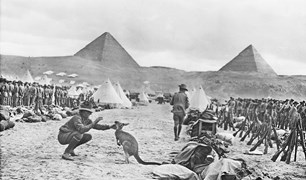 A kangaroo was smuggled to Mena Camp, the British Empire's training ground in Egypt.