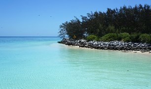 Heron Island is known for its marine biodiversity, especially its turtles.