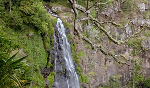 The stunning Chalahn Falls are just one reason to visit Lamington National Park.