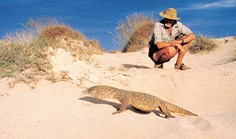 Obituary Harry Butler Australian conservationist