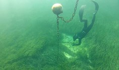 Rottnest Island seagrass mooring research Western Australia