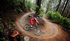 Mount Buller Alpine Epic mountain bike trail