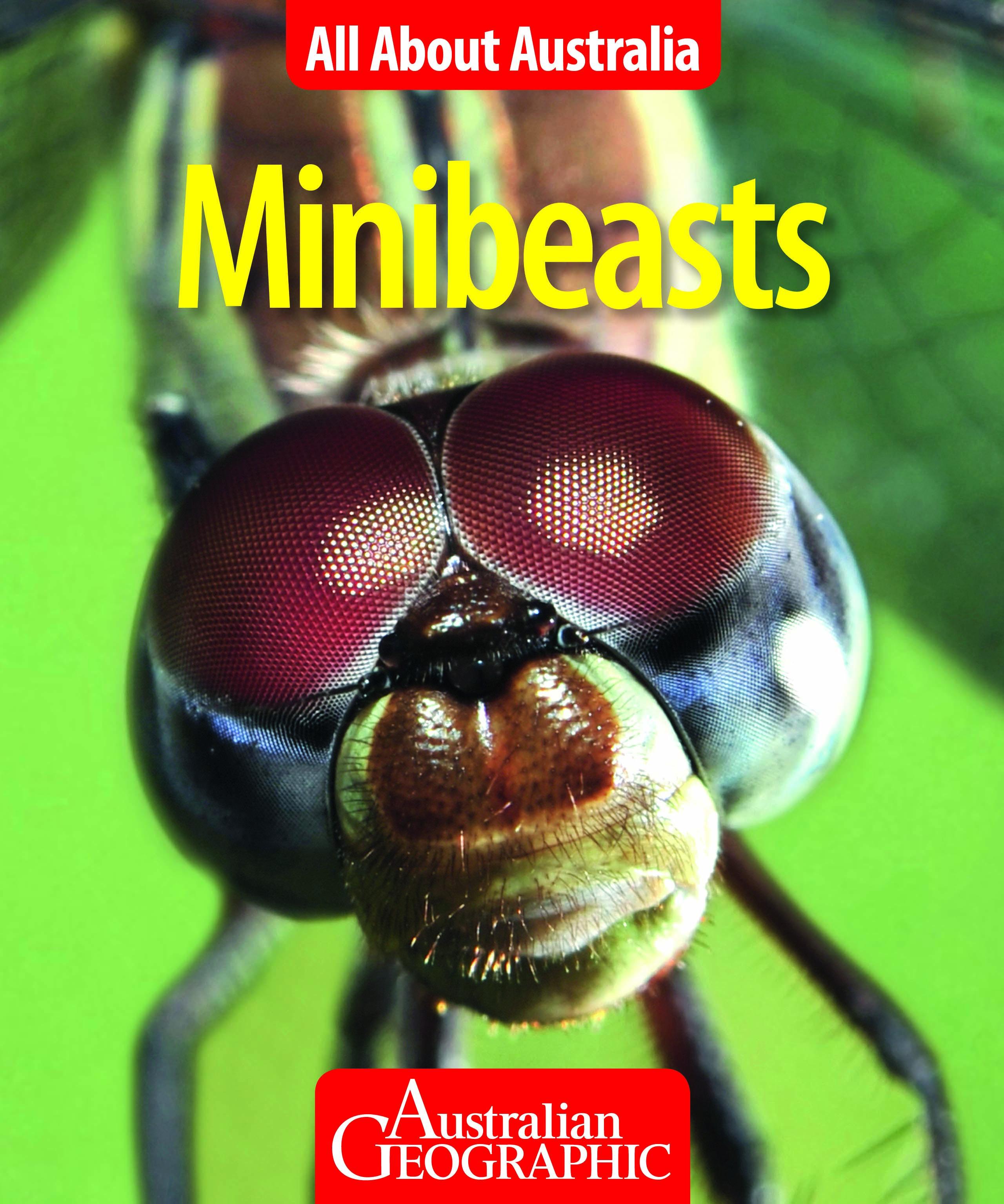 Minibeats