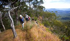 The track towards Spicers Peak follows a steep, narrow spur affording magnificent views over Cunningham's Gap.