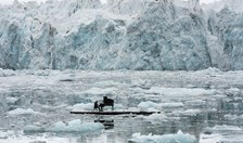 world-renowned Italian composer and pianist, Ludovico Einaudi, performed an historic concert in the Arctic Ocean