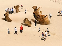 rhino sculpture by the sea