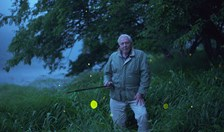 David Attenborough Life That Glows
