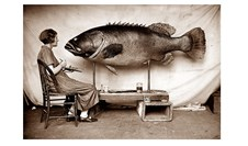How do you perform a taxidermy on a 600kg fish?