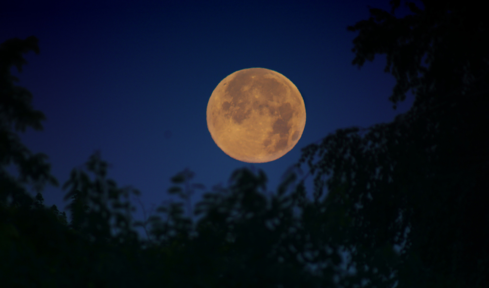 Super Moon Tonight >> 'Super Moon' to light up the skies on Monday - Australian Geographic
