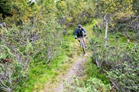 mountain bike trail norway