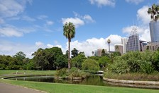 Royal Botanical gardens sydney