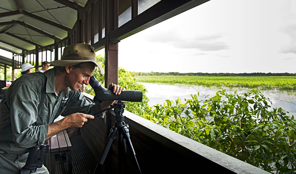 kakadu birdwatching