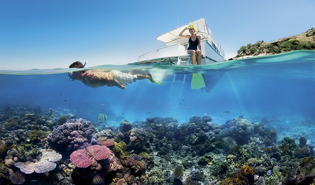 snorkeling on the great barrier reef Queensland