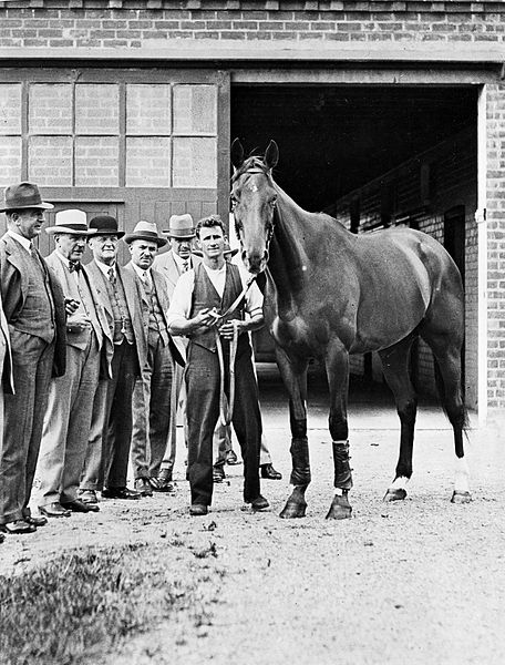 phar lap and tommy woodcock