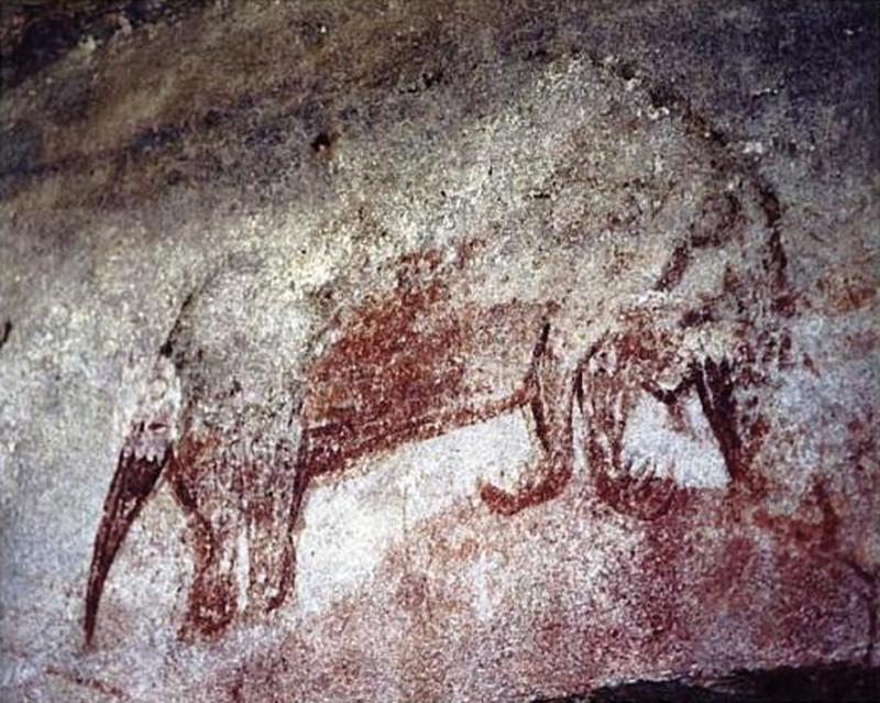 long beaked echidna rock art