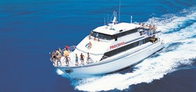 live aboard cruise snorkelling great barrier reef