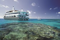 Coral Expeditions' purpose-built vessel gives you access to the pristine outer reef and exclusive mooring destinations.