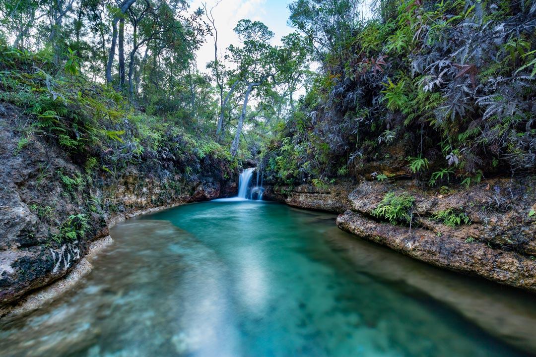 Sam Creek
