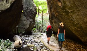 Queensland's Carnarvon Gorge
