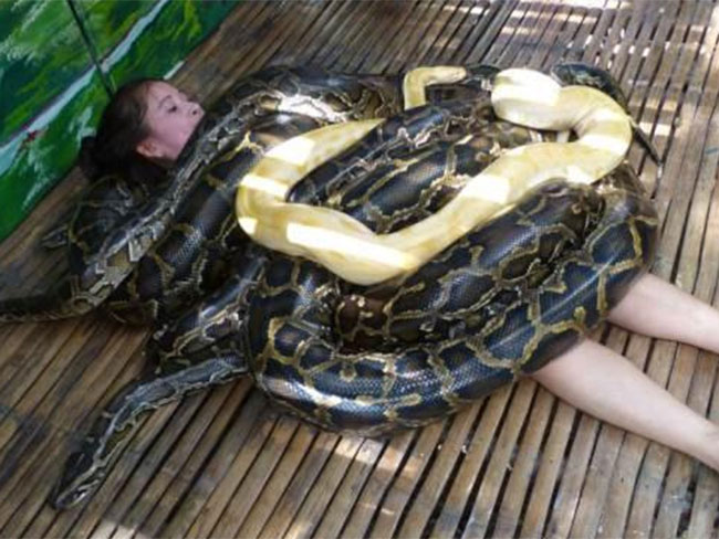 Snake massages exist