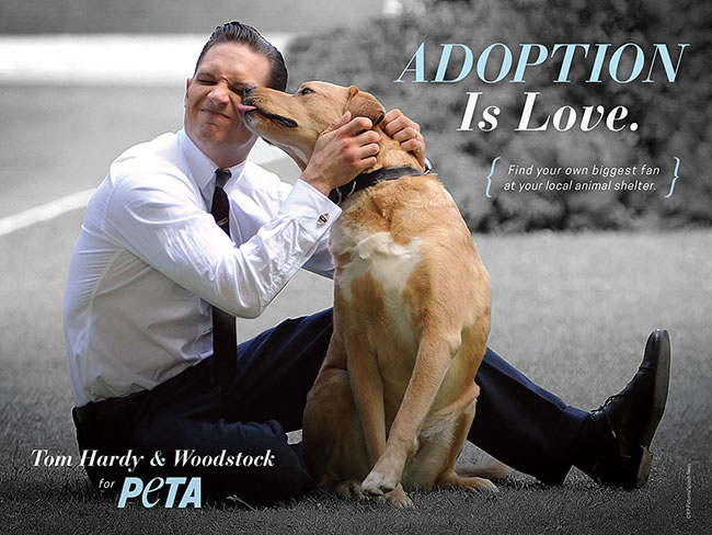 Please enjoy Tom Hardy looking ~*HOT*~ with his dog for PETA