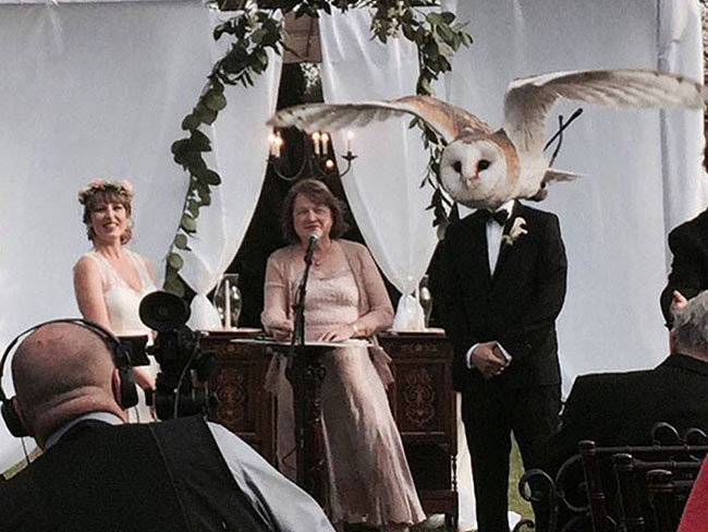 21 of the most hilarious wedding photos of all time