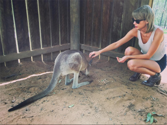 Taylor Swift has hit peak 'Straya on her Aussie tour