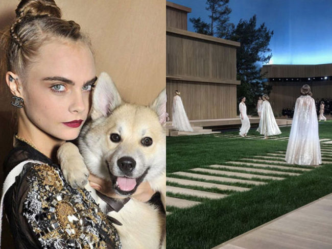 Cara Delevingne brought a dog to the front row at Chanel Couture
