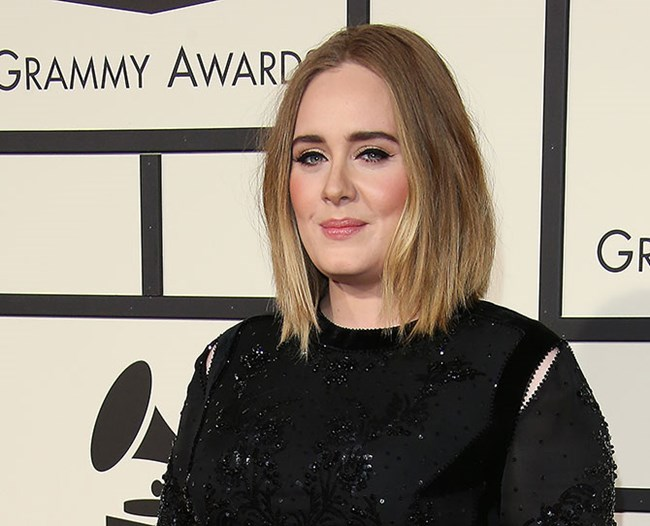 Adele makes a surprise visit to a cat café, good things happen