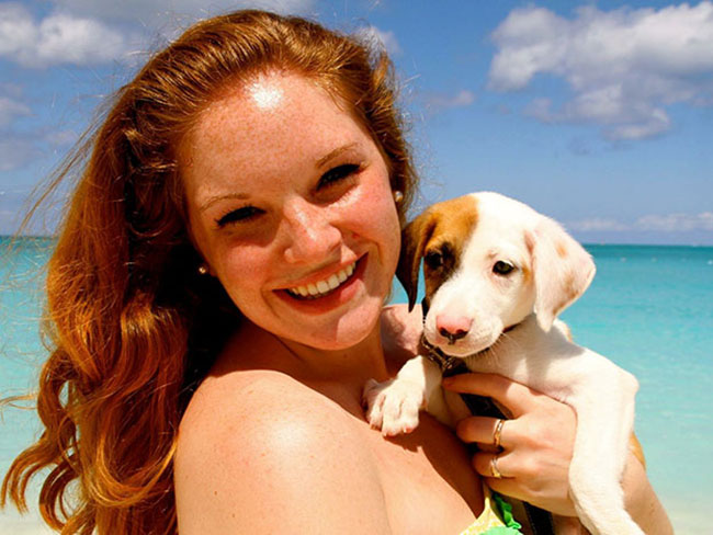 There is a tropical island where you can play with rescue puppies all day