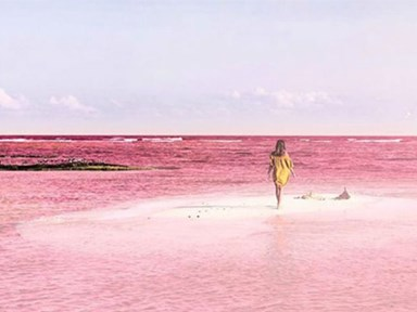 There is a pink lagoon in Mexico and we want to go there right now