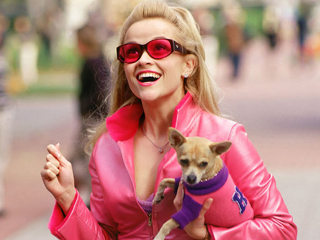 Reese Witherspoon says Legally Blonde 3 may actually be happening