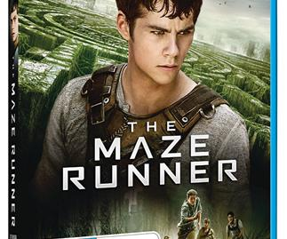 Win an adventure pack with The Maze Runner