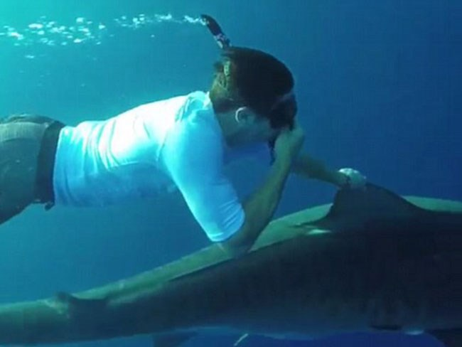 Zac Efron rode a shark