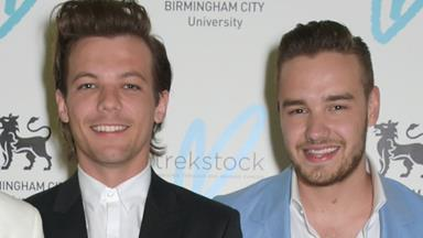 Liam Payne and Louis Tomlinson wrote a song together