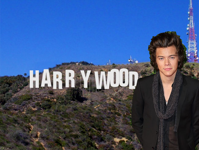 Harry Styles is ready for Hollywood