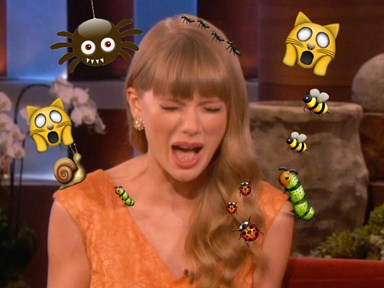 Taylor Swift was confronted by a bug and became all of us...