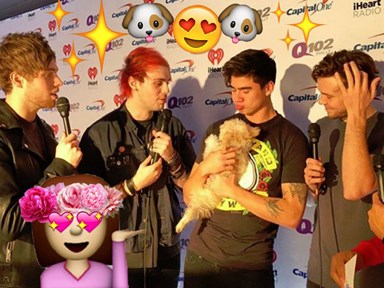 5SOS hanging out with puppies will make your day