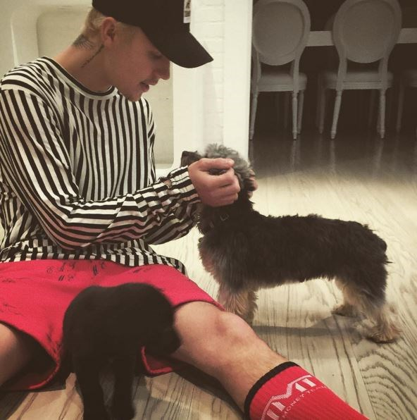 Justin Bieber is basically living the life we want. No we don't mean the squillions of the dollars or the private jets, nope. It's cos he's now the proud owner of two dogs. Yup, TWO. Over the weekend Biebs went out and got himself a wee pup to befriend his other cute pup, Esther. Everyone, meet Phil… aka one of the luckiest puppers alive.