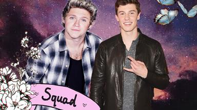 There's a very good chonce Niall and Shawn Mendes could be writing music together