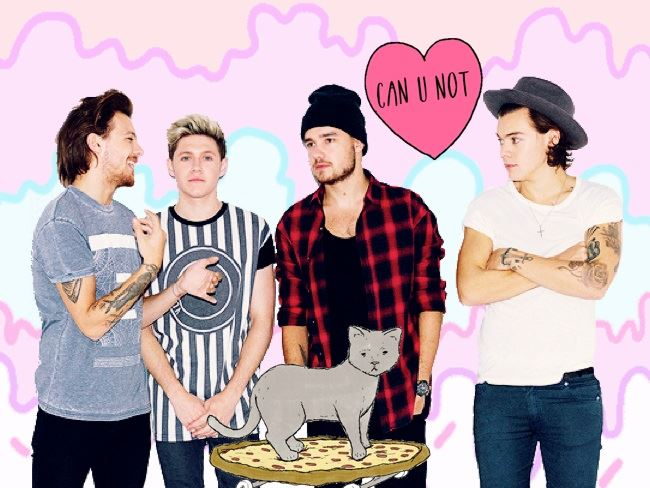 We've rounded up 10 things every hardcore Directioner srsly does not like hearing. Get ready to roll your eyes...