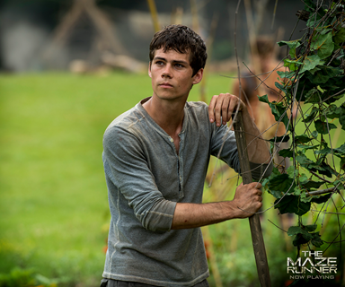 "Updated: 'Maze Runner' star, Dylan O'Brien ""severely injured"" on set"